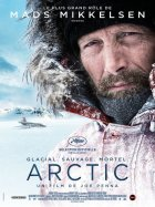 Arctic: Ledové peklo