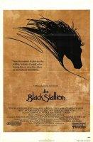 Černý hřebec