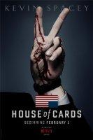 Dům z karet